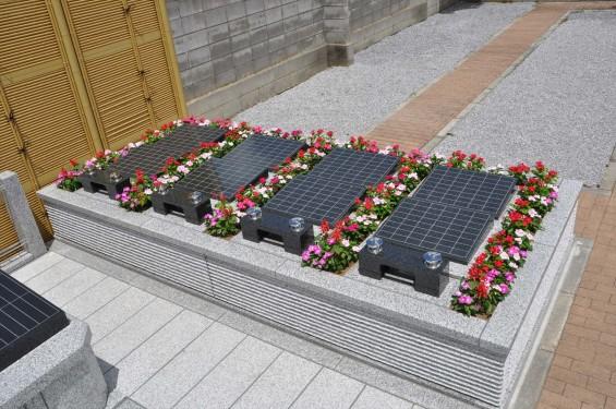 2016年8月 小江戸・川越に樹木葬墓地が誕生!(埼玉県川越市の寺院 観音寺)DSC_8301
