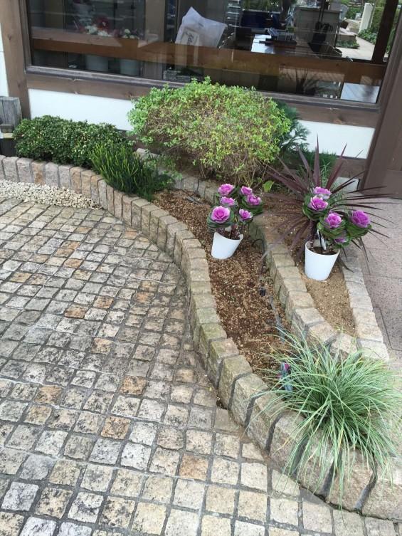 201611 埼玉県の霊園 鴻巣霊園 植栽とお花の植え替えIMG_0064