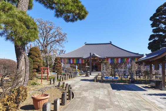 埼玉県上尾市の寺院 遍照院_DSC0051