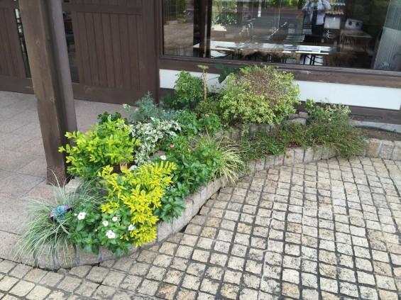 201611 埼玉県の霊園 鴻巣霊園 植栽とお花の植え替えIMG_0061