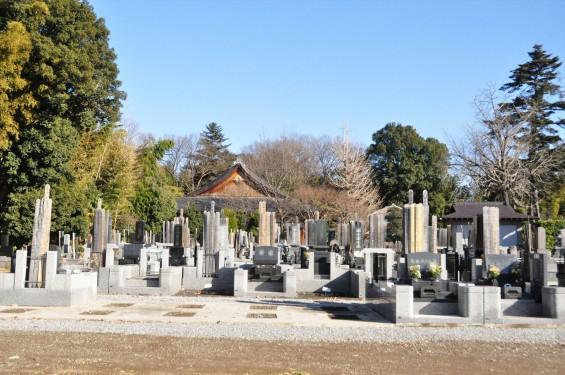 埼玉県さいたま市西区の寺院 清河寺 せいがんじDSC_0186