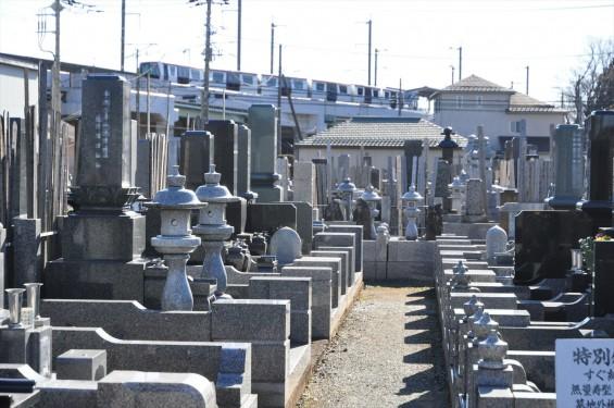 埼玉県伊奈町の寺院 松福寺 しょうふくじDSC_0106  ニューシャトル 志久駅
