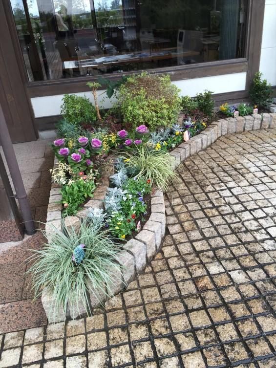 201611 埼玉県の霊園 鴻巣霊園 植栽とお花の植え替えIMG_0085