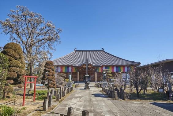 埼玉県上尾市の寺院 遍照院_DSC0068