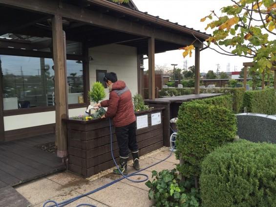 201611 埼玉県の霊園 鴻巣霊園 植栽とお花の植え替えIMG_0077