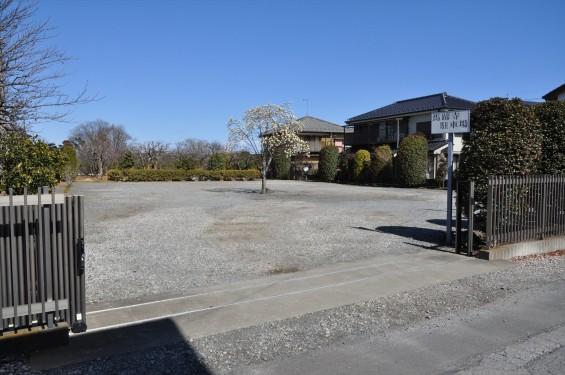 埼玉県上尾市の寺院 馬蹄寺のモクレン 三月DSC_0977