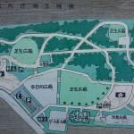 埼玉県越谷市 梅まつり 梅林公園DSC_5918