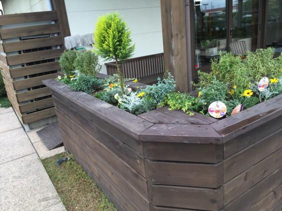 201611 埼玉県の霊園 鴻巣霊園 植栽とお花の植え替えIMG_0083