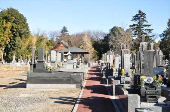 埼玉県さいたま市西区の寺院 清河寺 せいがんじDSC_0183