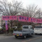 埼玉県越谷市 梅まつり 梅林公園17-03-05-15-21-33-075_photo