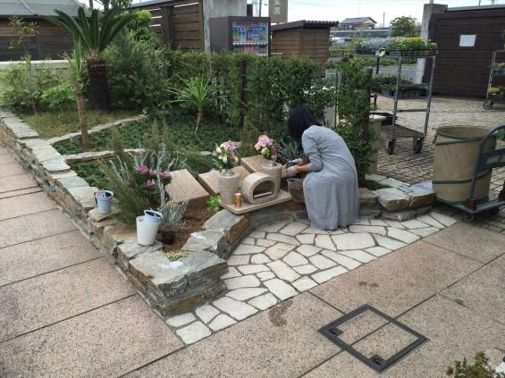 201611 埼玉県の霊園 鴻巣霊園 植栽とお花の植え替えIMG_0075