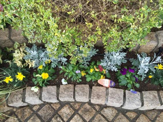 201611 埼玉県の霊園 鴻巣霊園 植栽とお花の植え替えIMG_0092