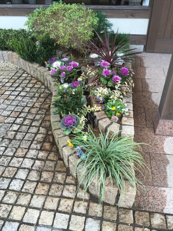 201611 埼玉県の霊園 鴻巣霊園 植栽とお花の植え替えIMG_0086
