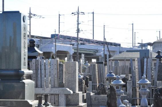 埼玉県伊奈町の寺院 松福寺 しょうふくじDSC_0112  ニューシャトル 志久駅