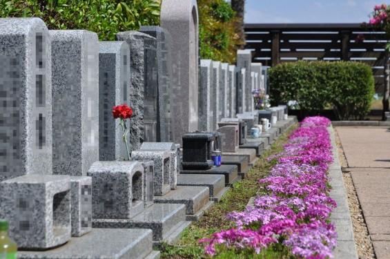 2017年4月19日鴻巣霊園 お墓 墓地 樹木葬 花壇 ガーデンDSC_1870