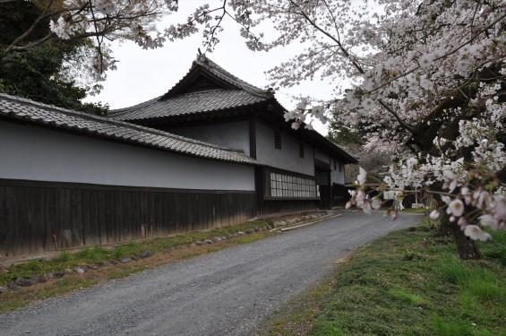 2017年4月 埼玉県熊谷市  幕末の志士 根岸友山 根岸家長屋門 満開の桜DSC_1242