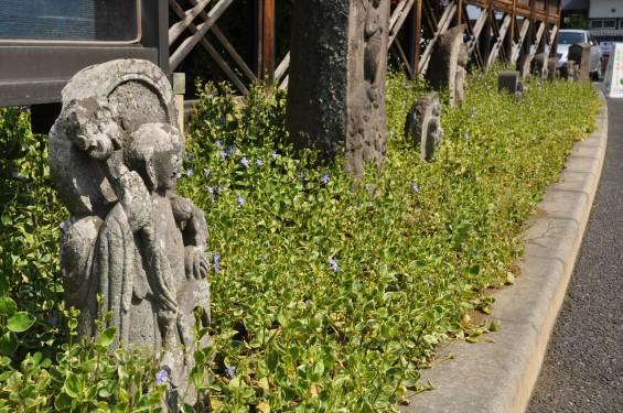 2017年4月14日 上尾市仏教会顧問会総会 今年の会場は遍照院でした 境内の様子 DSC_1585