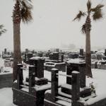 20140209 埼玉 桶川霊園 雪景色 DSC_0190