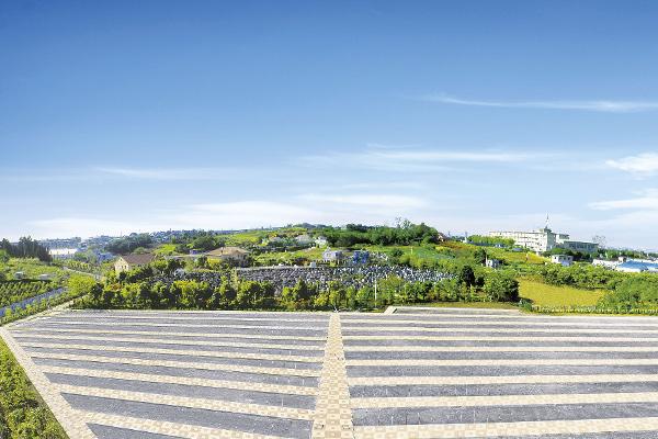 朝陽の杜墓苑「東の丘」